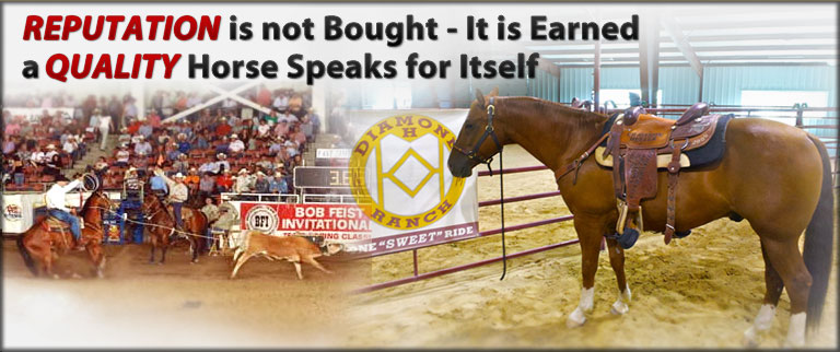 Team Roping Horses For Sale, Roping Horse Training | Diamond H Ranch